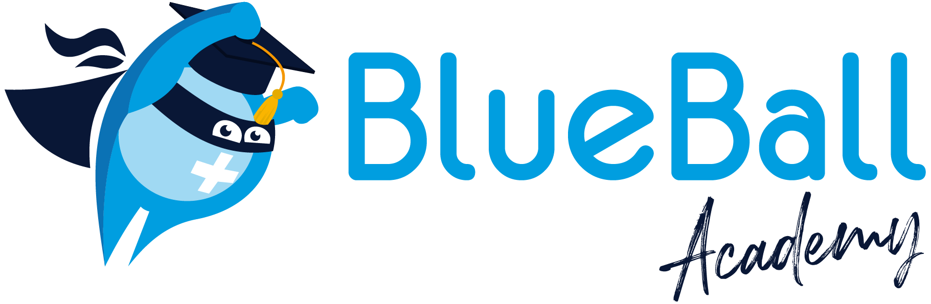 BlueBall Academy